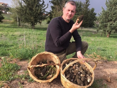 "N. Philippopoulos: The ""Guru"" of wild mushrooms & Truffles in Greece"
